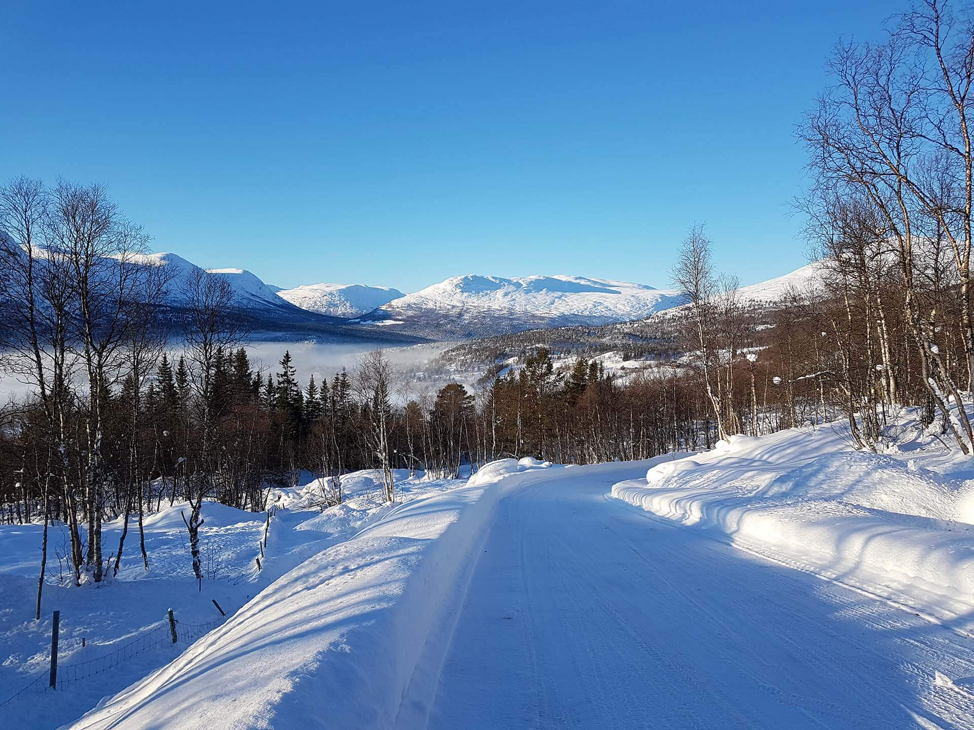 Bjorlia Nordvest hyttefelt – Thøring Hyttefabrikk